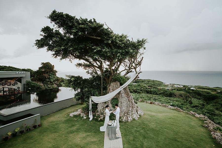 Holy tree wedding3
